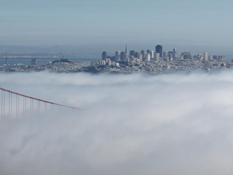 San Fran Fog