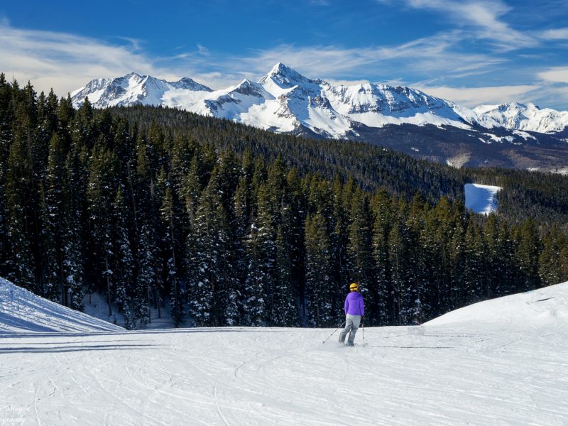 The Last Skier